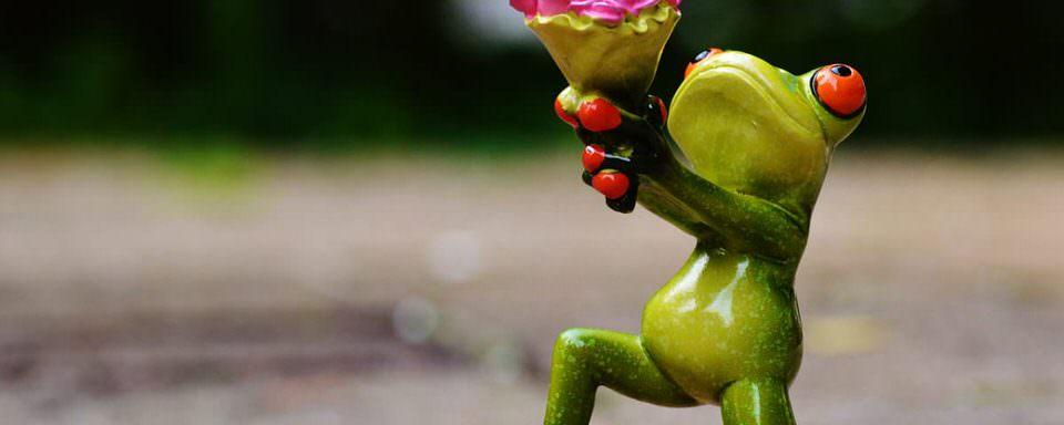 Rana in ginocchio con fiori